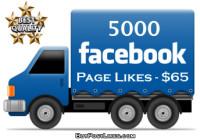 buy 5000 facebook likes