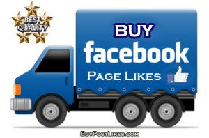 buy fb page likes